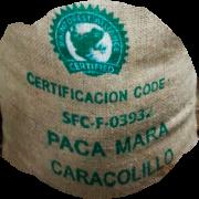 Paca-Mara